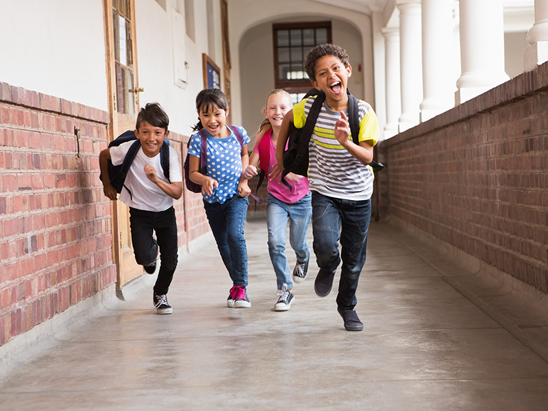 Tumbnail for: Back to School: New Opportunities