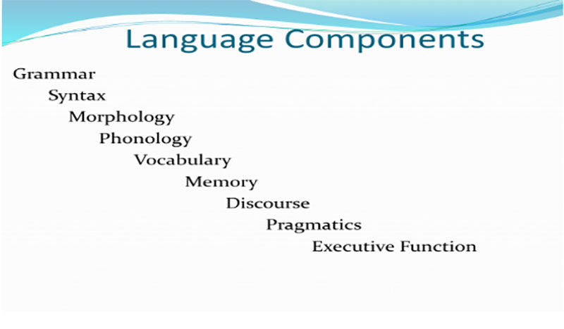 Photo of: Language Compenents