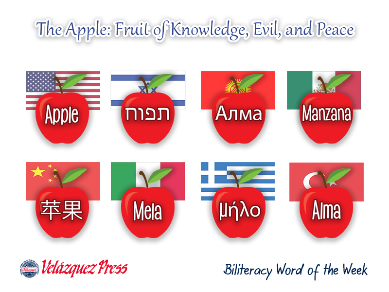 Tumbnail for: The Apple: Fruit of Knowledge, Evil, and Peace