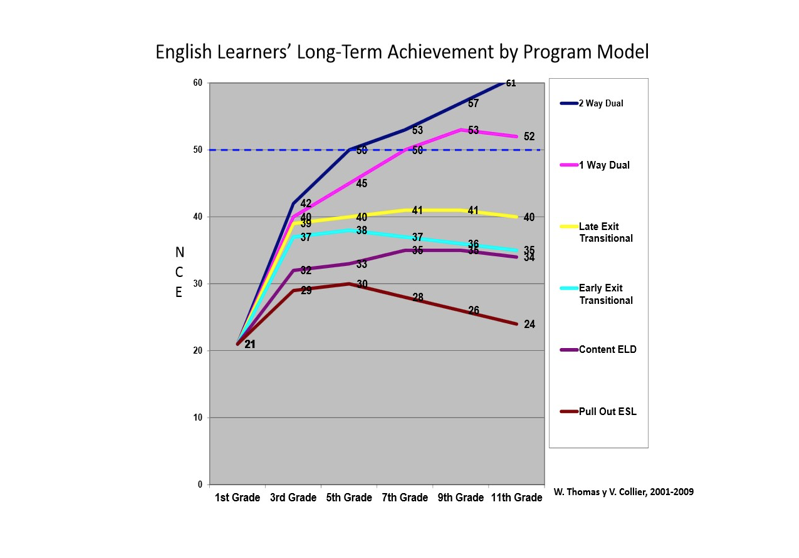 Disaggregating the Data: A Critical Survival Strategy for Dual Language Programs